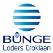 logos bunge 5